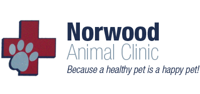 Norwood Animal Clinic